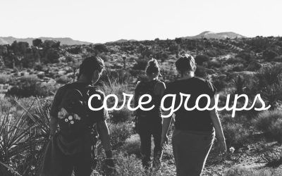 """I'm New to the Vineyard and just joined a core group…"""