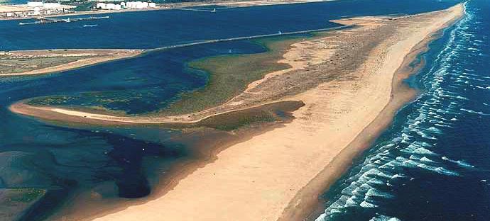Playas para perros en Huelva  RedCaninaes