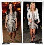 Who Wore Lanvin Better? Courteney Cox or Kate Moss