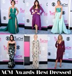 Who Was Your Best Dressed At The 2017 ACM Awards?