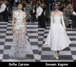 Christian Dior Spring 2018 Couture Red Carpet Wish List