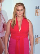Amy Schumer In Brandon Maxwell