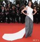 Andie MacDowell In Maticevski -'Pain And Glory (Dolor Y Gloria/ Douleur et Gloire)' Cannes Film Festival Premiere