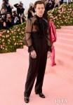 Harry Styles In Gucci - 2019 Met Gala
