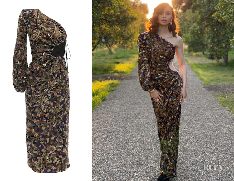 Lily Collins' Saint Laurent Embroidered One Shoulder Midi Dress