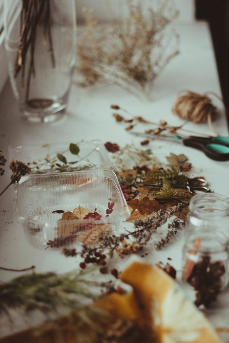 dried-leaves-on-a-clear-plastic-container-3274917