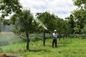 fertility management and fertilizer application