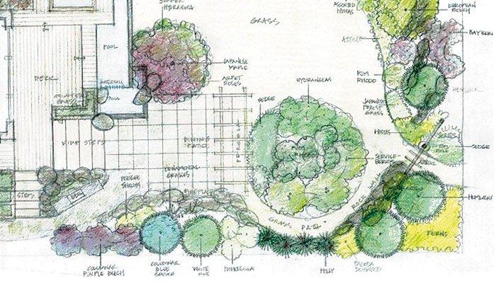 7 Basic Landscape Design Elements