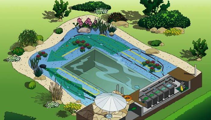 The Benefits Of A Natural Swimming Pool