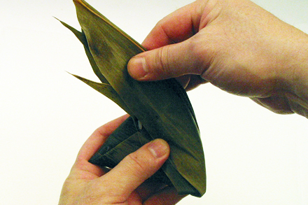 Wrapping Zongzi 4
