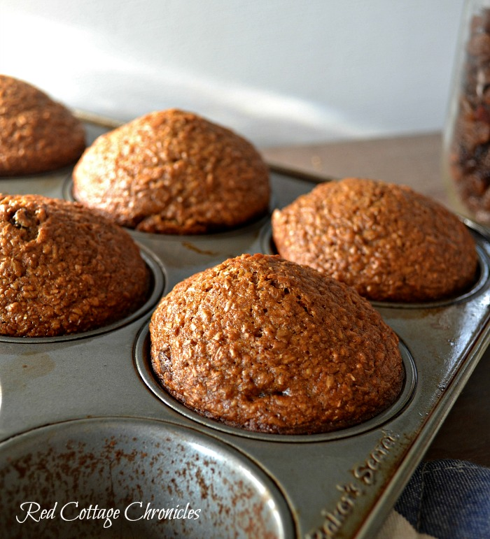 easy bran muffins only one bowl needed