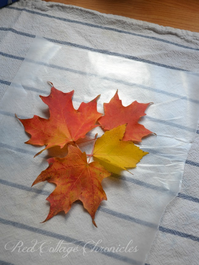 Old School Wax Paper Leaf Project