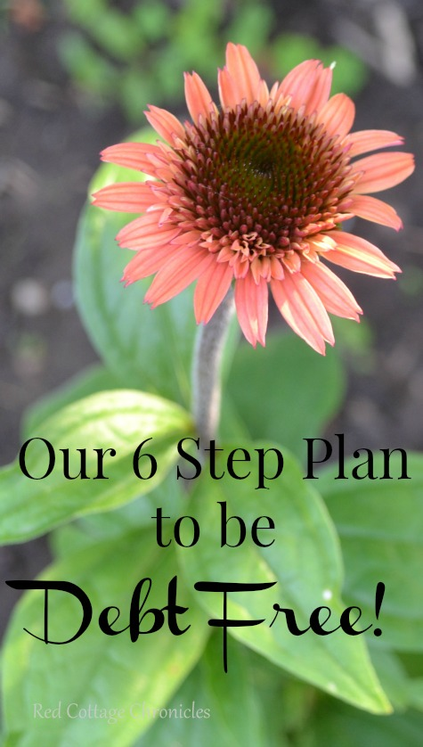 We follow these 6 simple rules to be debt free (including our mortgage) in under 5 years!