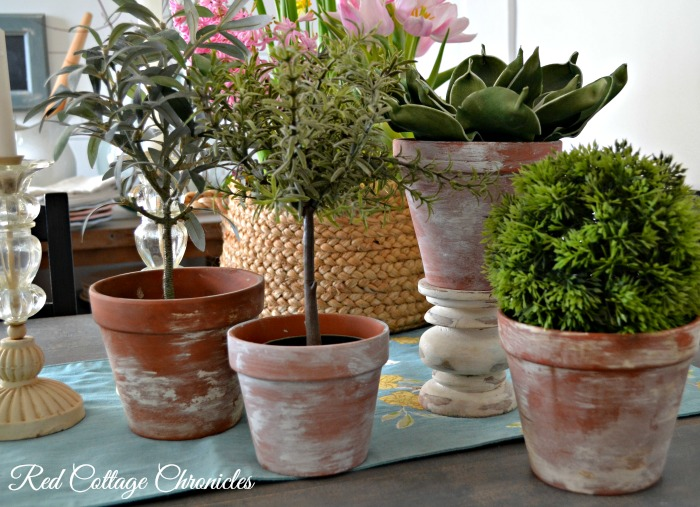 Aged Terracotta Pots - Year in Review