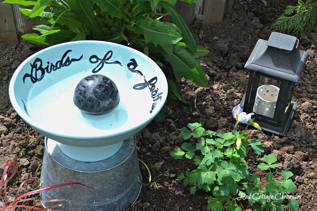 diy birdbath ideas were on my mind at the thrift store this month