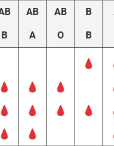 Note if you have questions about paternity testing or blood group inheritance your primary care physician should be able to provide with an also types  groups chart   ab  red cross services rh redcrossblood