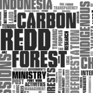 REDD in the news: 18-24 May 2009