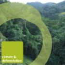 REDD: The realities in black and white - new report from Friends of the Earth International