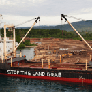 Can REDD save the forests of Papua New Guinea?