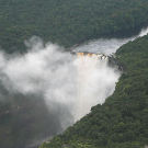 News from Guyana by Janette Bulkan: Guyana has made no changes to either policies or practices to reduce deforestation