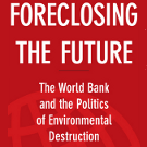 """Bruce Rich on the World Bank's response to climate change: 2. The REDD+ programme is """"in denial about the intractable challenge of governance"""" 