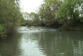 Blue River Conservation