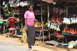 Uganda School to Market