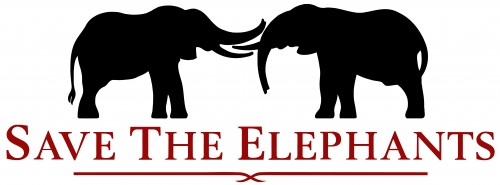 Elephant Ivory is Government property, says Supreme Court