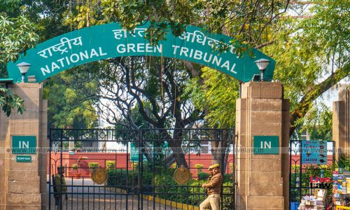 Show Cause Notices Issued for closure of Flipkart, Patanjali for using excessive plastic packaging: CPCB tells NGT