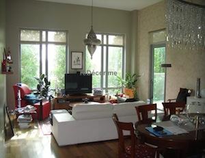 sitting room interior decor greens