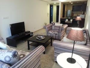 classic temporary calm living room interior decor