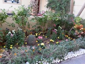 frong garden organising