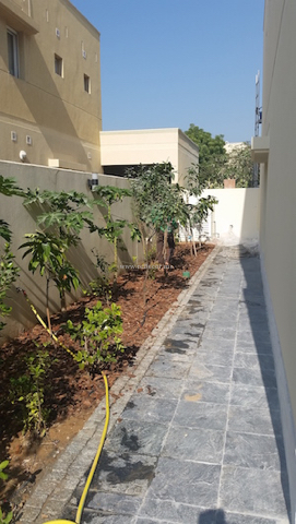 fruit garden, Dubai villa interior and exterior design consultation