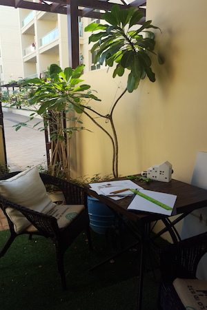 simple garden upgrade, dubai, budget, design in the greens
