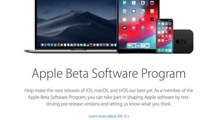 Descargar perfil beta pública iOS 12