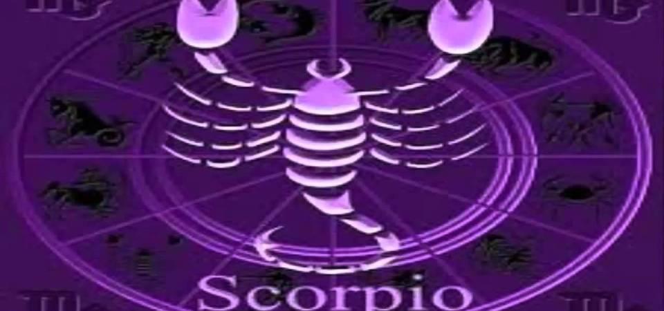 Datos curiosos sobre Escorpión - Red Esotérica