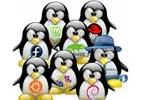 Las mejores veinte distribuciones de Linux para el día a día