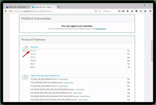 Probar navegador TLS 1.3