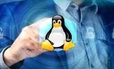 Conoce éstas distribuciones de Linux enfocadas en la seguridad