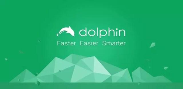 Ahorrar datos al navegar con Dolphin