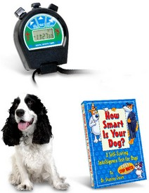dogIQ small Dog IQ Test   how smart is your pooch?