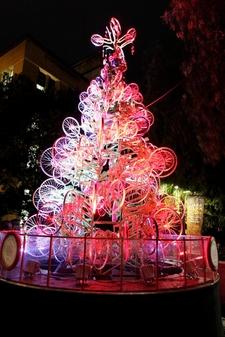 Australia's TreeCycle