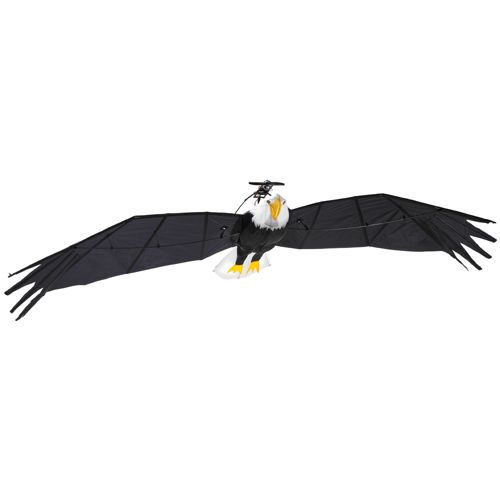 9.5-foot R/C Bald Eagle will confuse birdwatchers in your area