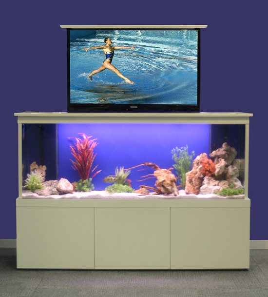 TV Tank hides your big screen with the fish