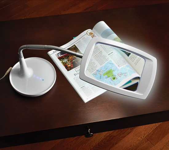 Distortion Free Magnifying Light Distortion Free Magnifying Light will get you up close and personal with a book