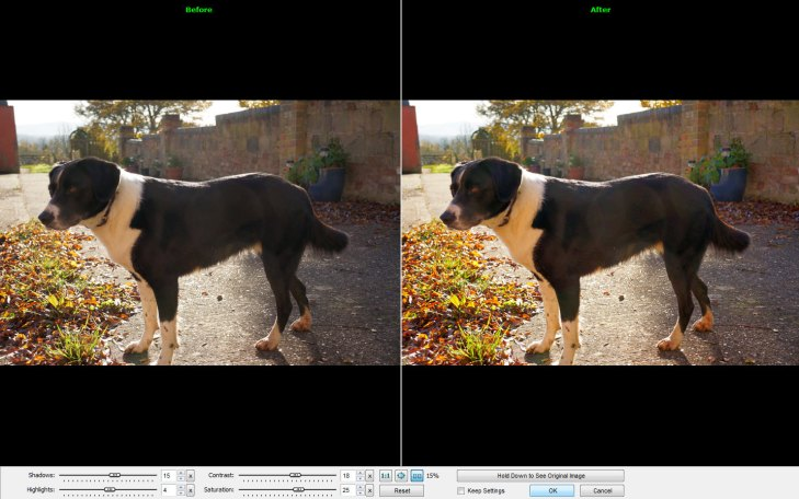 FastStone Image Viewer – the best tool for managing your photos. Period. [Freeware]