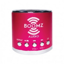 Boomz Audio mini speaker