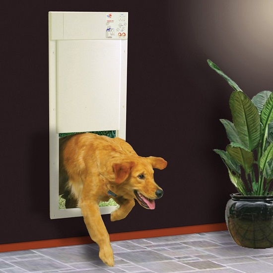 Electronic Pet Door – it's always greener on the other side