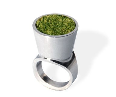Growing Ring – tiny landscape for the concrete jungle