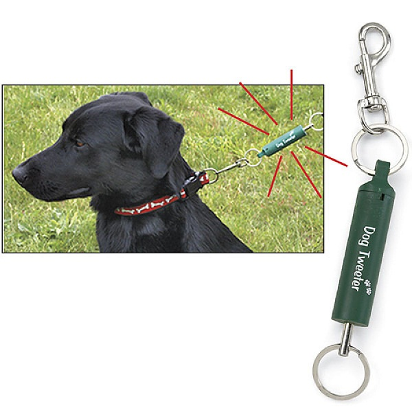 Dog Leash Trainer – enjoy your stroll without being pulled